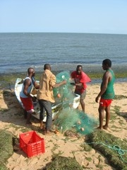 [Mozambique] Fishermen bring in their catch - Maputo. [Date picture taken: 10/2006]