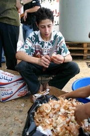 [Lebanon] Ahmed Fneish peels onions at a Hezbollah-run soup kitchen in Beirut. [Date picture taken: 08/13/2006]