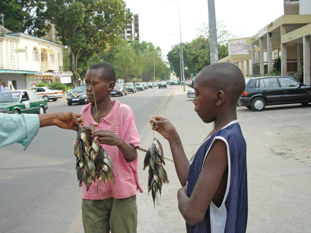 Young boys selling fish on a street in Brazzaville. Congo July 2007.