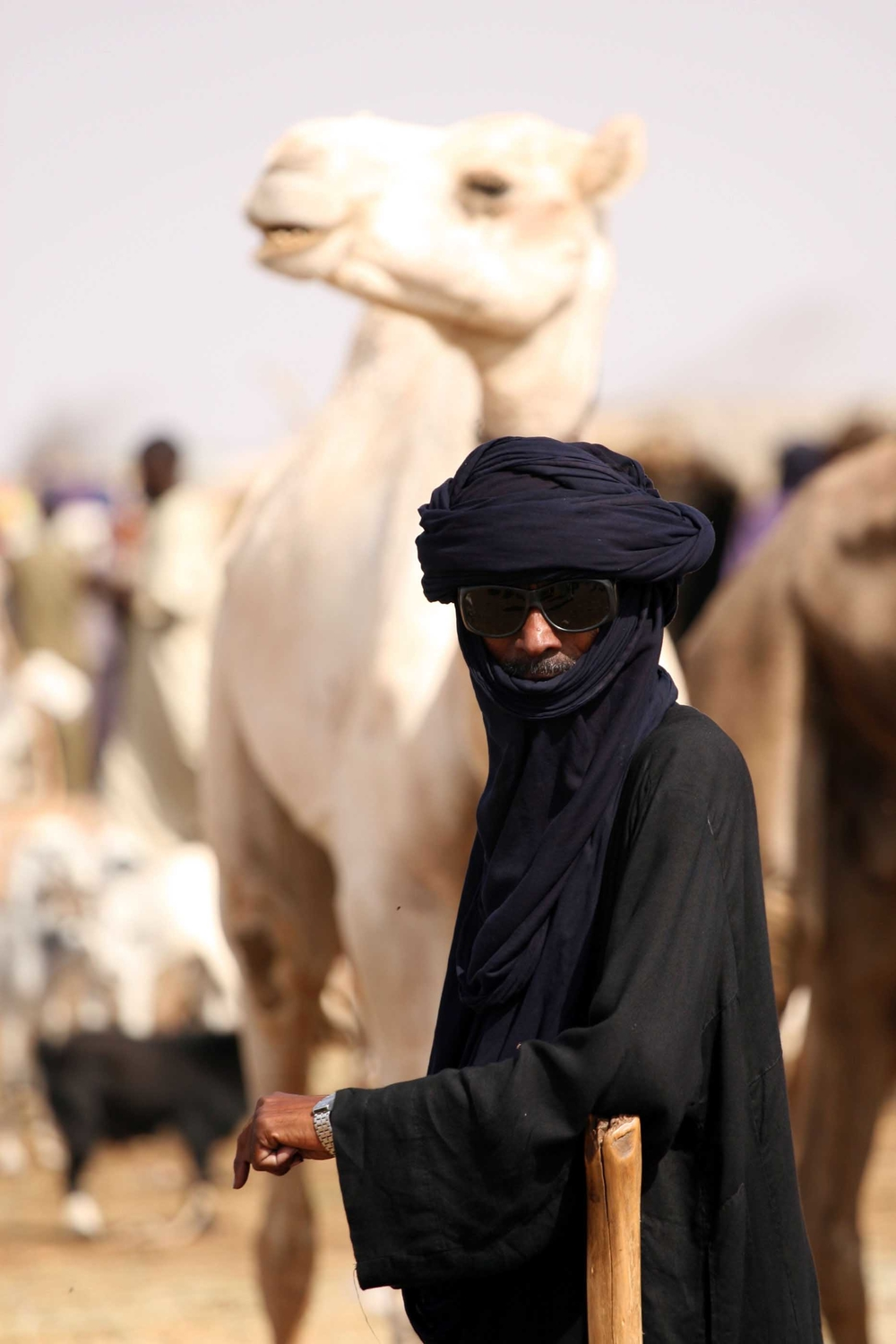 A tuareg trader, in traditional dress, waits for customers at the daily camel market in Agadez, northern Niger, 10 September 2007.  After an early 2007 tuareg rebellion, aimed at increasing political representation and a greater share of uranium revenues,