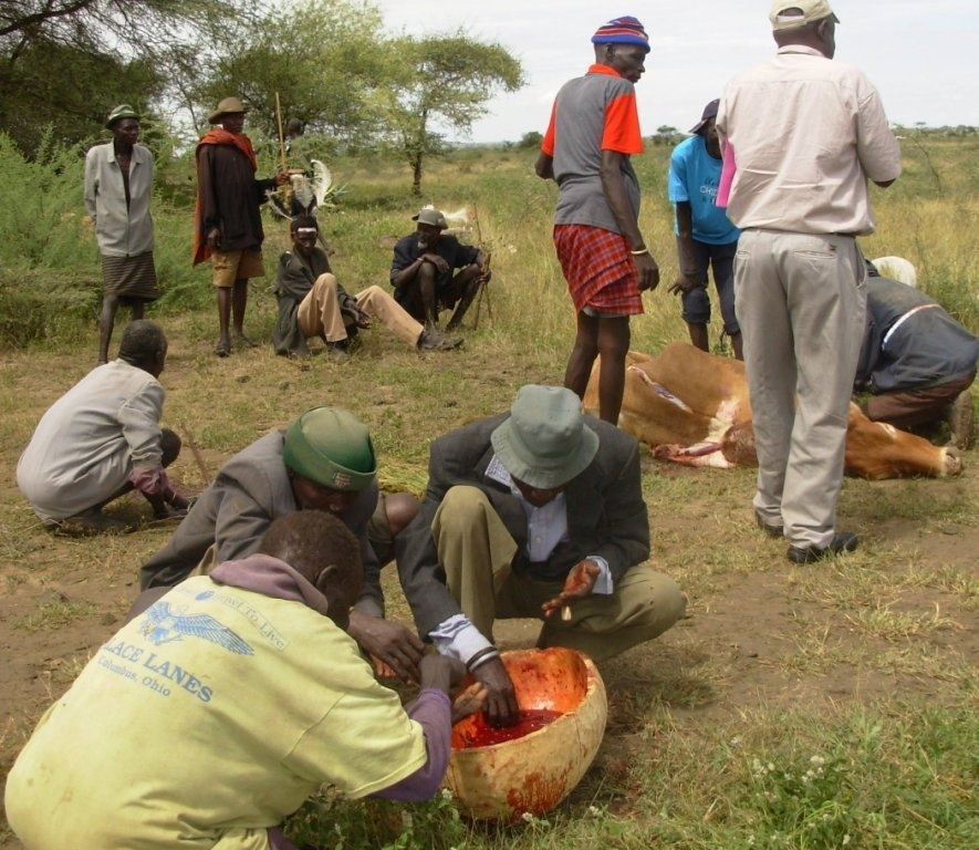 Men share a calabash of blood gotten from a slaughtered bull. There is acute food shortage in Karamoja.
