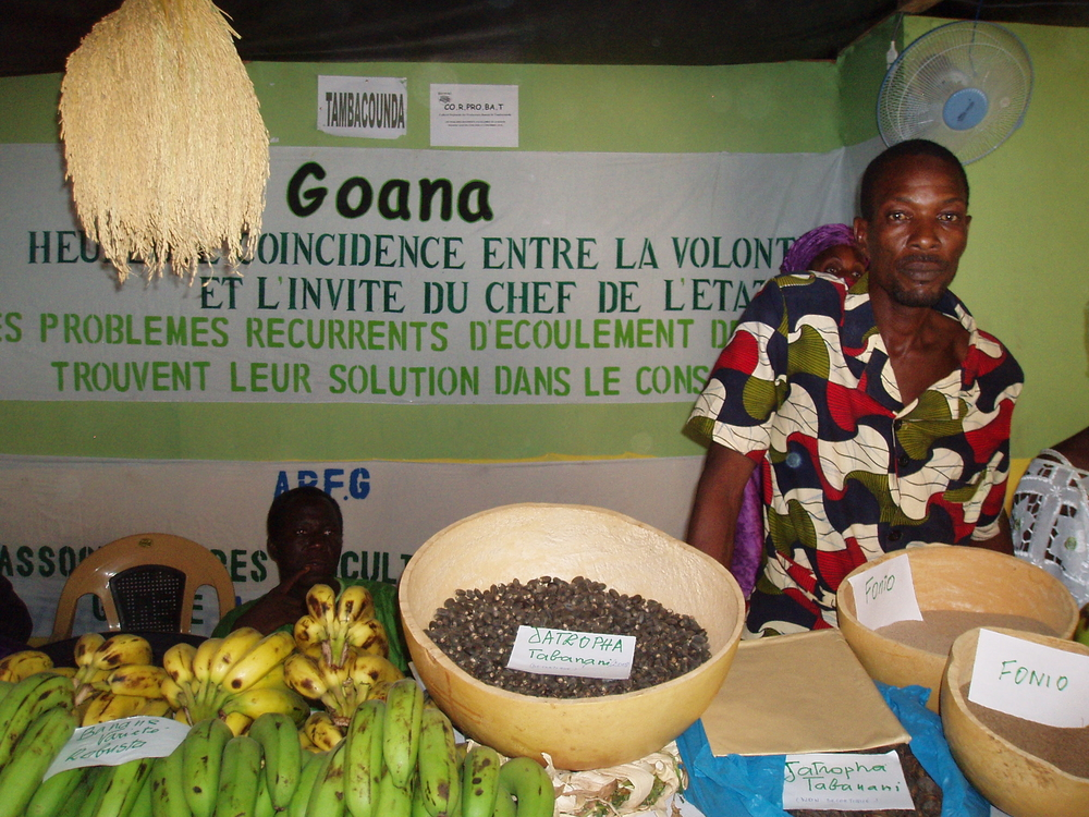 Member of the Regional Banana Producers Association in Senegal at Dakar event to celebrate good harvest in October 2008.