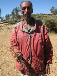 Kahsay Beyen, 63, a farmer in Afenjiwo village, Ruba Feleg peasant association in Atsbi Womberta woreda in the eastern zone of Tigray, lost all the crops he had planted in May. Like many areas in the Horn of Africa, northern and northeastern Ethiopia are