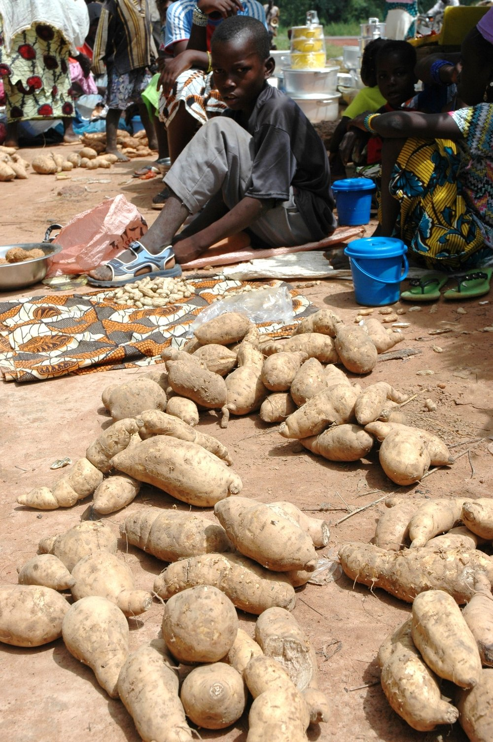 Locally grown potatoes in Sikasso, Mali will not stay here long- most are destined to be purchased by people from the capital or neighbouring countries. Sixteen percent of under-five children in Sikasso are acutely malnourished despite the region's status