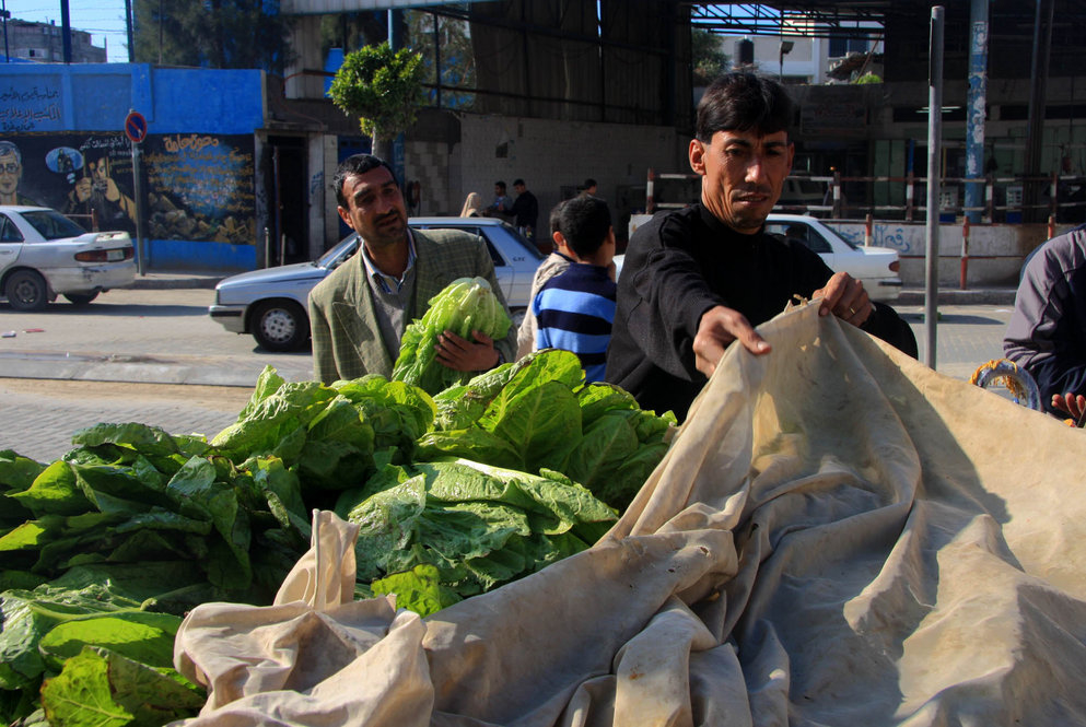 Vegetables on sale at a market in Gaza