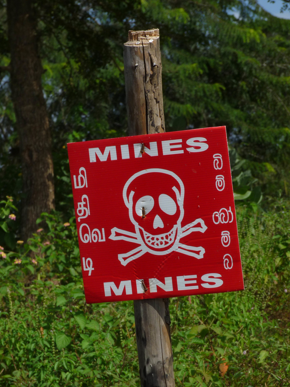 Despite an effective demining and MRE campaigns, mines and UXO's still pose a threat in Sri Lanka's former combat zone