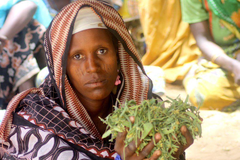 Ayesha Yaou, who organized the women of her village, Dan Gouchy Haoussa in Magaria district in the Zinder region with the leaves that make their meal. Niger March 2011