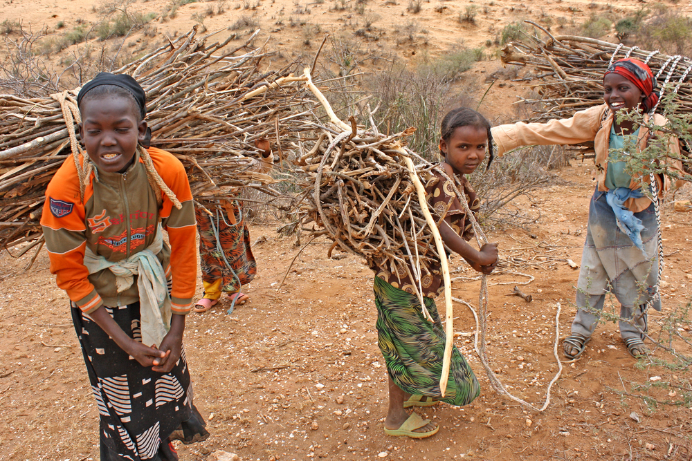 Women fetching firewood in the Borena zone in Ethiopia's Oromiya region
