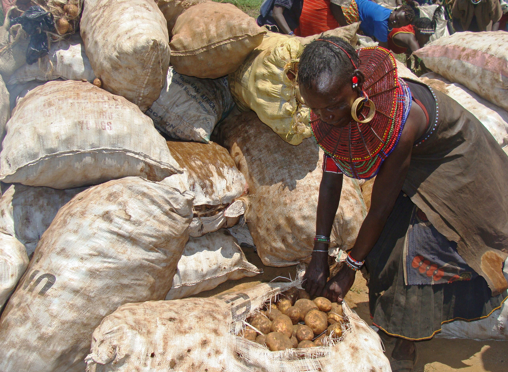 A woman pulls a bag of potatoes in Nyaunyau, East pokot, donated by farmers from Nakuru and Nyandarua county, Kenya
