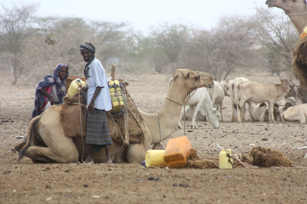 Drought-affected Liboi residents have to share their limited resources like water with Somali refugees