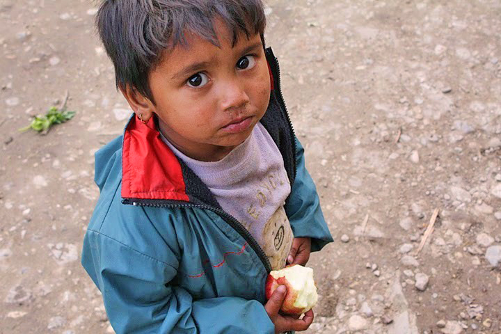 Despite an abundance of apples, children in Jumla District, Karnali Zone are among the most chronically malnourished in Nepal. The government has implemented a child grant programme in which mothers receive 200 Rupees for children under five to go toward