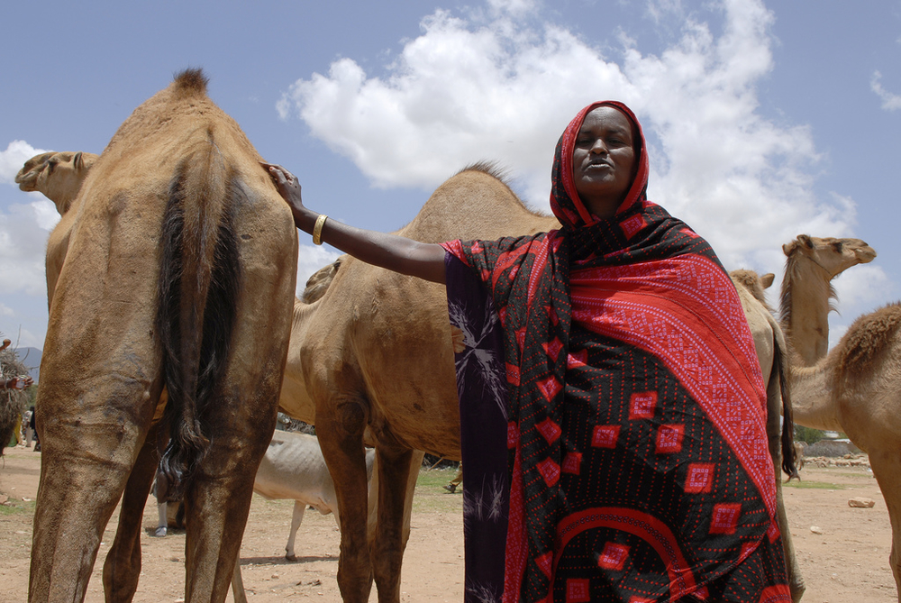 Camel trader and mother-of-five Osub Fahid in Jijiga market, Somali region, Ethiopia