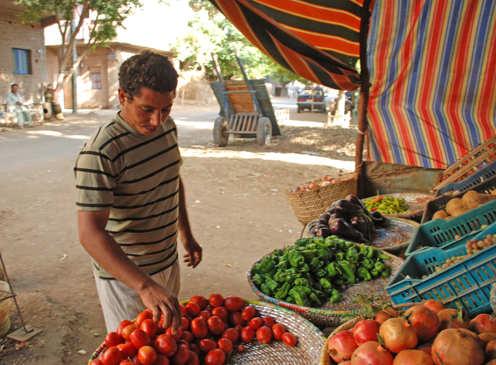Mahrous Mohammed opened a vegetable stand in his village of Saad Allah when he returned from Libya with no job, no prospects and very little money