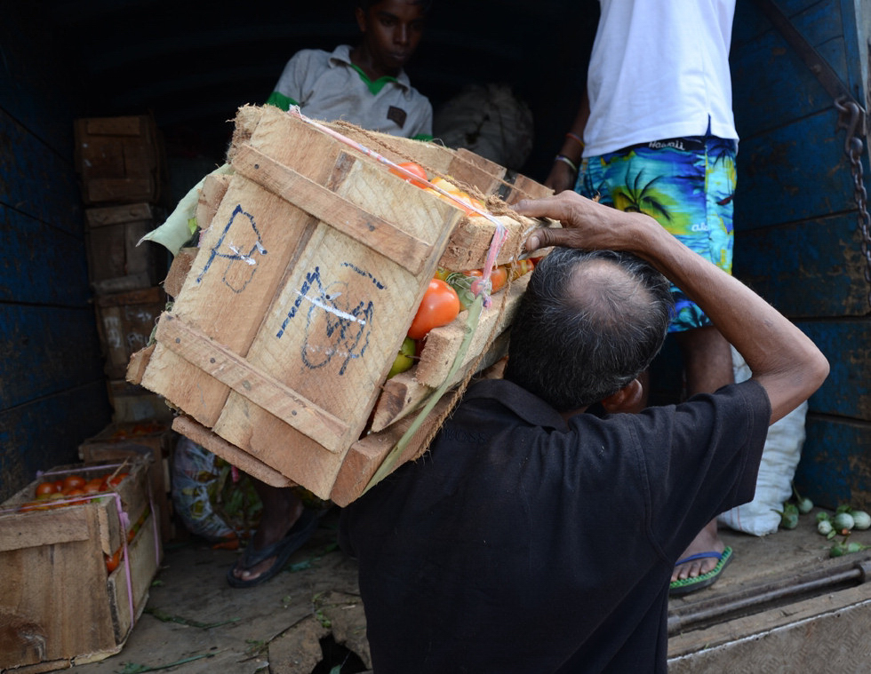 Food handler transporting tomatoes in Sri Lanka where up to one third of the country's produce post-harvest is damaged due to poor storage and transport