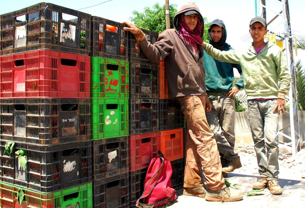 Under-age workers returning home from their work at the settlement of Tomer, in the Jordan Valley