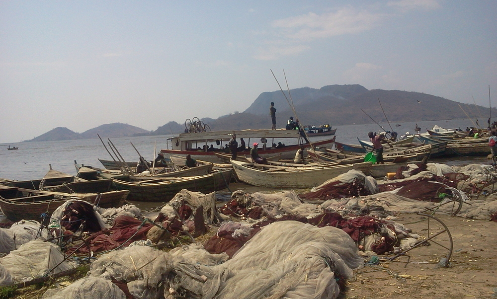 As Lake Chilwa's water levels continue to drop, fishermen have flocked to Kachula Harbour, one of the few remaining viable fishing spots