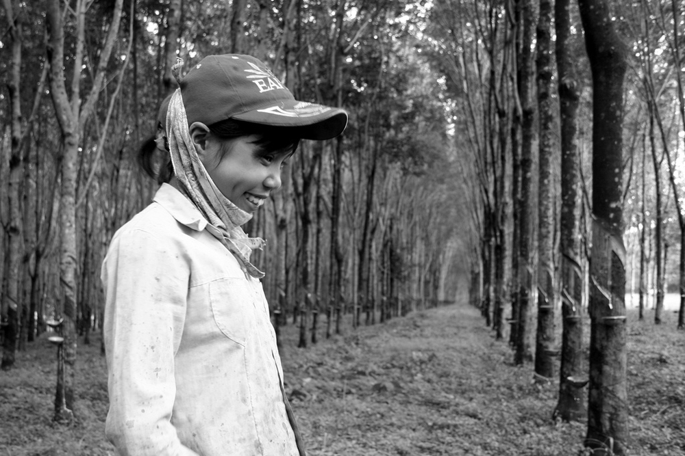 Rubber tree plantation worker in Central Highlands. Migrants are potential carriers of anti-malaria drug resistance in Vietnam