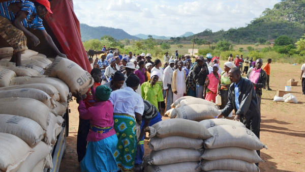 Grain distribution to food insecure people in Zimbabwe through a joint programme with WFP