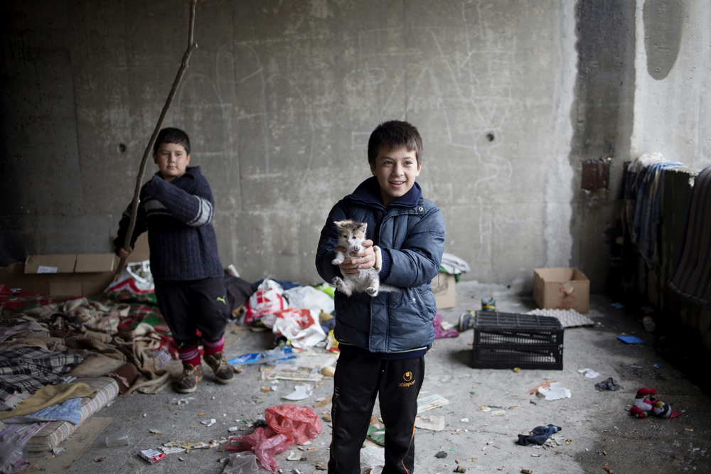 An Afghan child plays with a kitten in a room on the second floor of an unfinished building where homeless immigrants are living on the outskirts of the Bulgarian capital Sofia