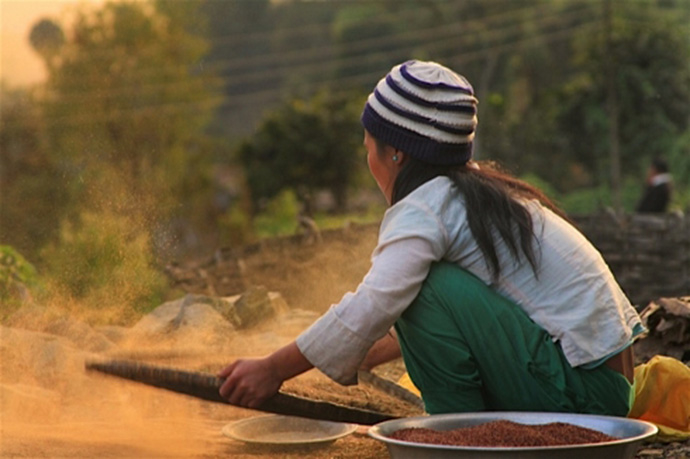A young girl cleaning rice in Nepal's Solukhumbu District. Poverty is particularly pervasive in Nepal's rural areas