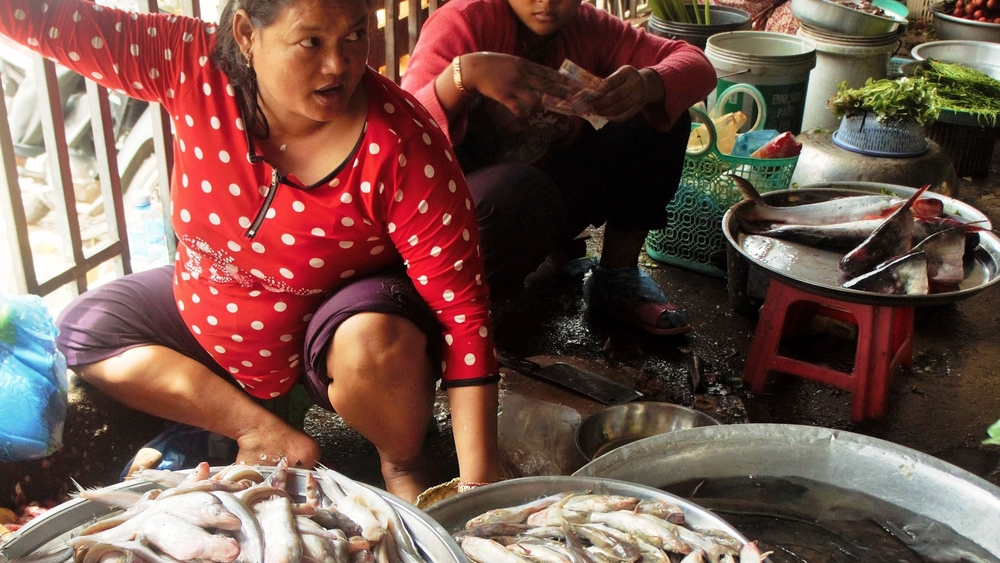 A woman sells fish in a Cambodian market. Cambodians rely heavily on fish for their daily protein intake.