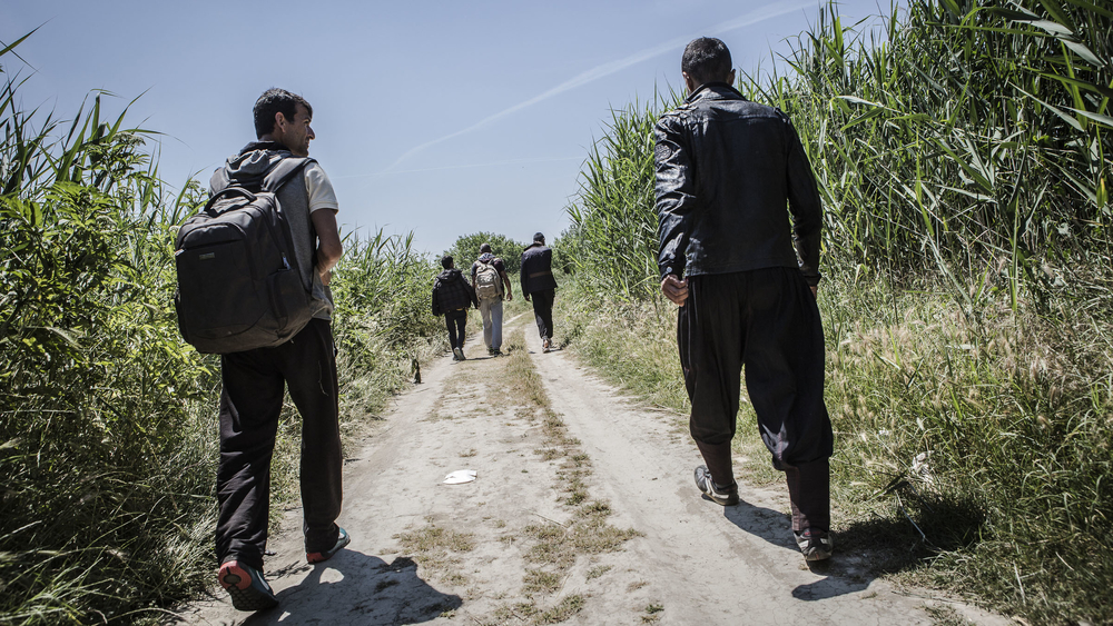 A group of Afghan refugees walk through the buffer zone at the Greek/Macedonian border
