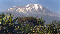 [Tanzania] Mt Kilimanjaro: Conservation of the mountain and its ecosystem is vital to thousands of Tanzanians, for whom it is a source of water, agricultural livelihood and tourism income.