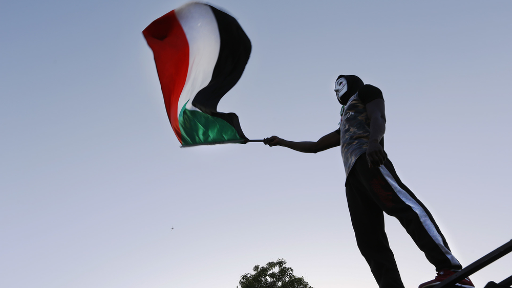 A Sudanese activist waves the national flag