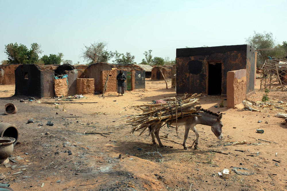 A donkey stands in a burnt town square.