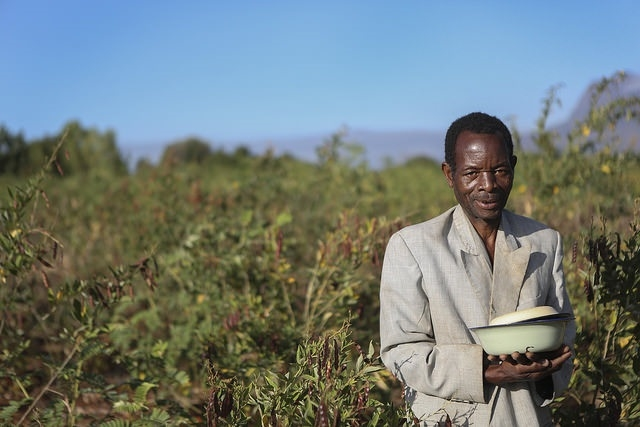 Chili pepper farmer, Malawi