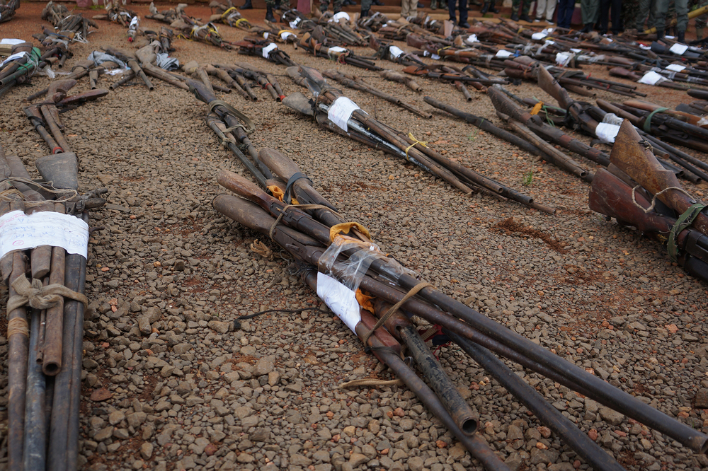 Photo of guns in Cameroon