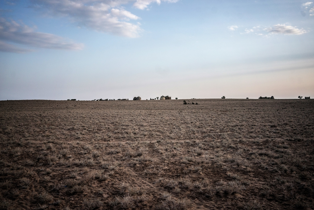 Drought-ravaged rangeland in Turkana County, Kenya